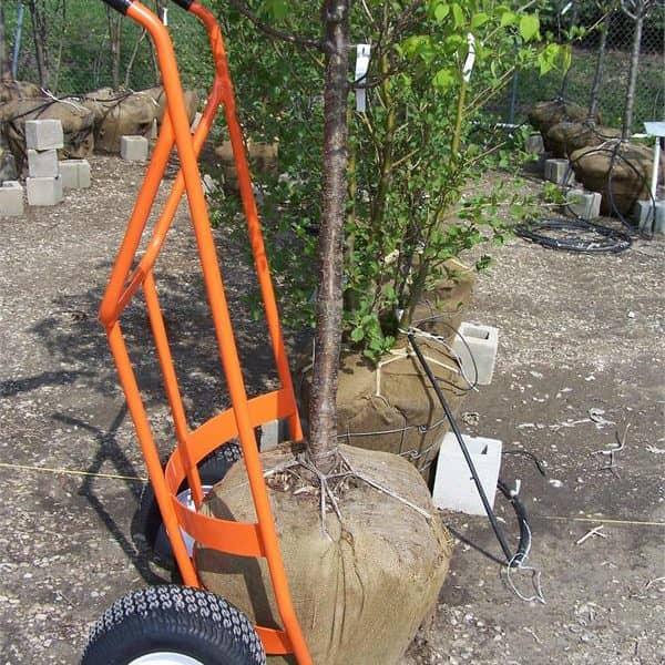 tree ball cart
